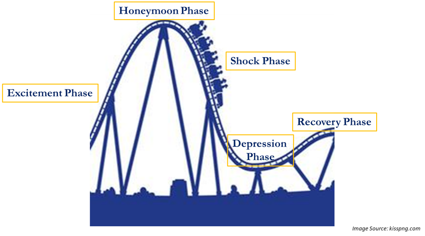 College Transition Roller Coaster